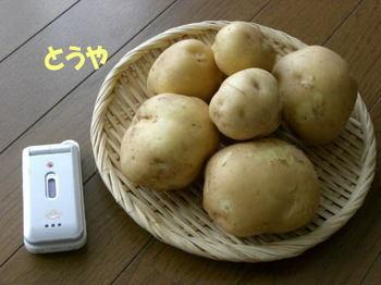 Komoro_410